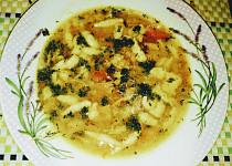 Francouzská králičí polévka