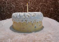 Vaječná tlačenka jako rychlý dort (Dělená strava podle LK - Zvířata)
