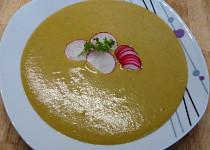 Zeleninová polévka s ředkvičkovými listy a žervé
