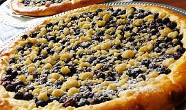 Borůvkový koláč z Borovan pro domácí pekárnu