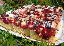 Nekynutý švestkový koláč
