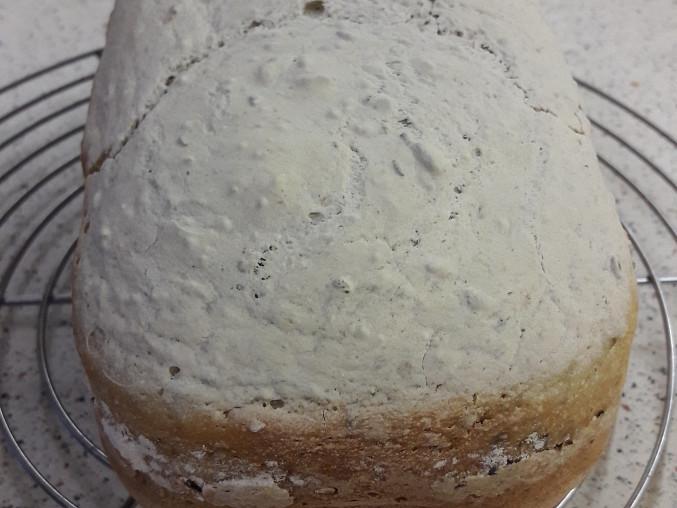 Chléb BZLP, vždy povedený